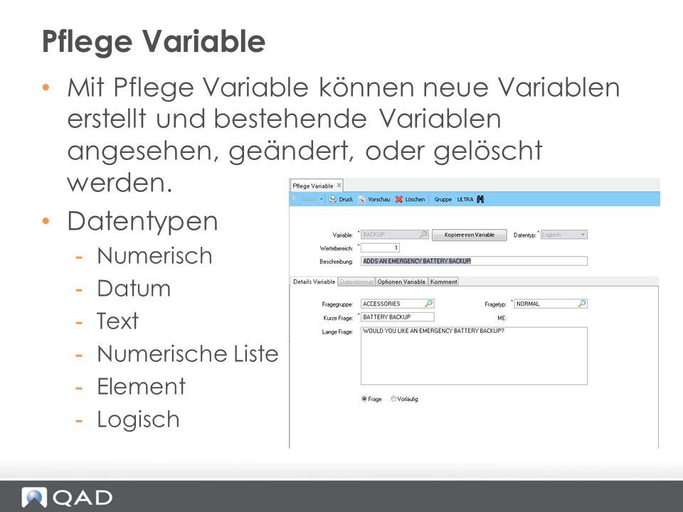 Mit Pflege Variable können neue Variablen erstellt und bestehende Variablen angesehen, geändert, oder gelöscht werden. Datentypen -Numerisch -Datum -T