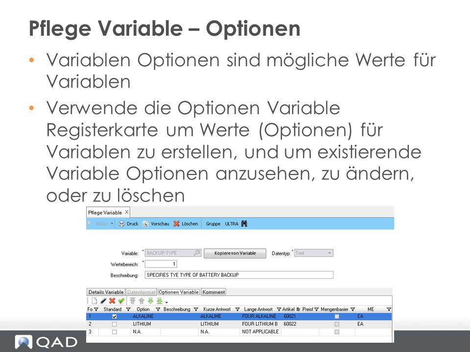 Variablen Optionen sind mögliche Werte für Variablen Verwende die Optionen Variable Registerkarte um Werte (Optionen) für Variablen zu erstellen, und