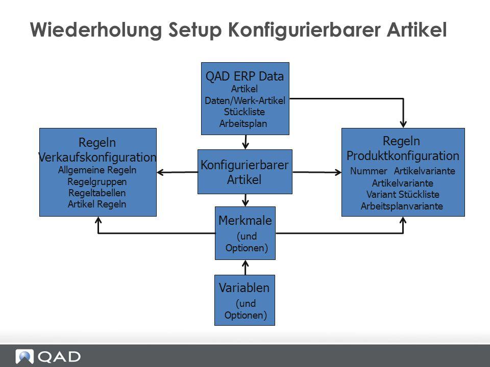 Wiederholung Setup Konfigurierbarer Artikel QAD ERP Data Artikel Daten/Werk-Artikel Stückliste Arbeitsplan Variablen (und Optionen) Konfigurierbarer A