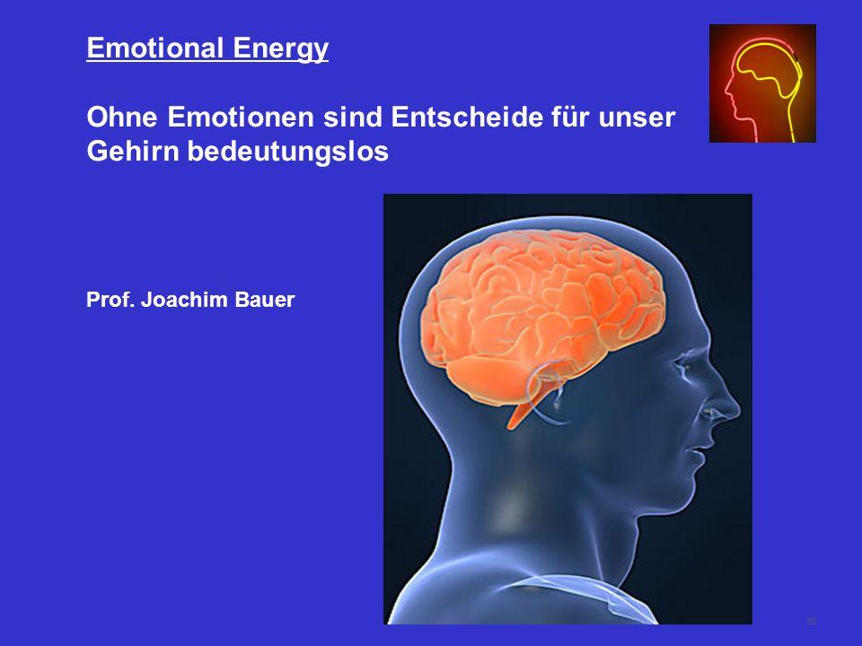 55 Emotional Energy Ohne Emotionen sind Entscheide für unser Gehirn bedeutungslos Prof.
