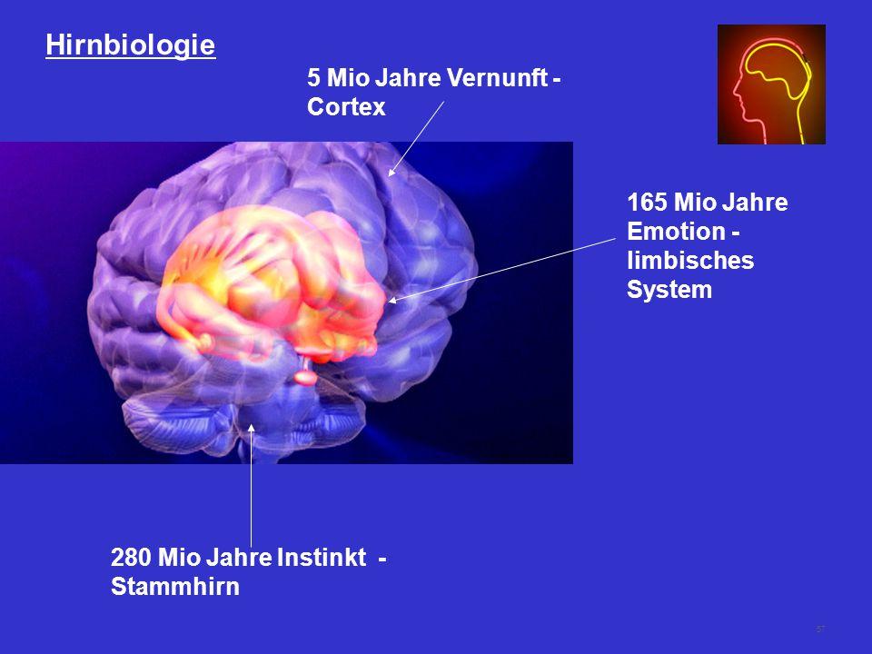 57 Hirnbiologie 280 Mio Jahre Instinkt - Stammhirn 165 Mio Jahre Emotion - limbisches System 5 Mio Jahre Vernunft - Cortex