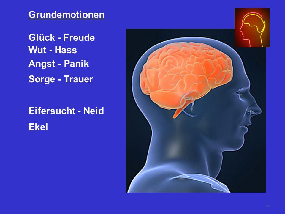58 Grundemotionen Glück - Freude Wut - Hass Angst - Panik Sorge - Trauer Eifersucht - Neid Ekel