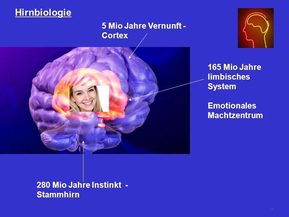 59 Hirnbiologie 280 Mio Jahre Instinkt - Stammhirn 165 Mio Jahre limbisches System Emotionales Machtzentrum 5 Mio Jahre Vernunft - Cortex