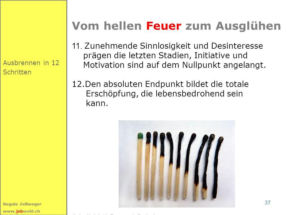 37 Regula Zellweger www.jobwohl.ch Ausbrennen in 12 Schritten Vom hellen Feuer zum Ausglühen 11. Zunehmende Sinnlosigkeit und Desinteresse prägen die
