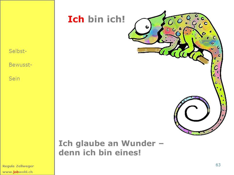 63 Regula Zellweger www.jobwohl.ch Ich bin ich! Ich glaube an Wunder – denn ich bin eines! Selbst- Bewusst- Sein