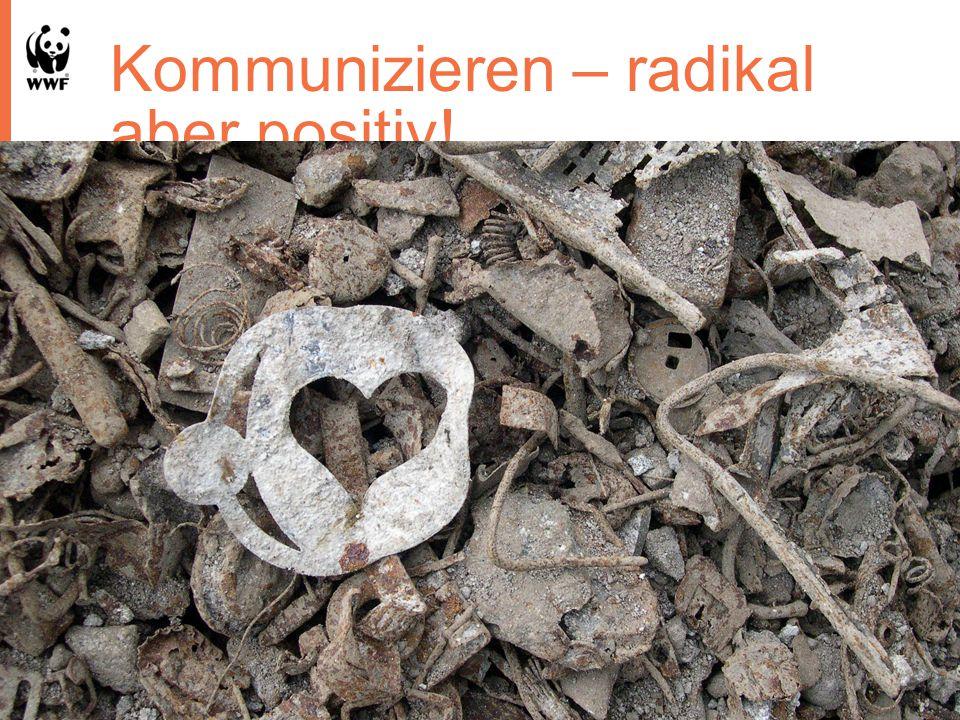 Kommunizieren – radikal aber positiv! 22.10.201318