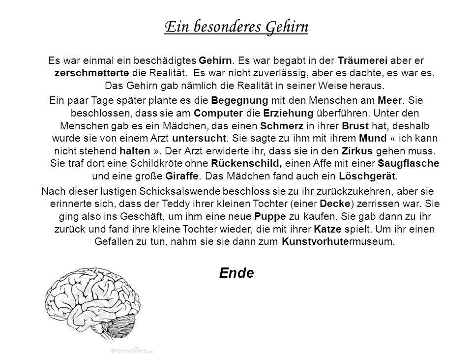 Ein besonderes Gehirn Es war einmal ein beschädigtes Gehirn.