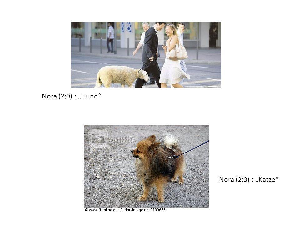 "Nora (2;0) : ""Hund"" Nora (2;0) : ""Katze"""