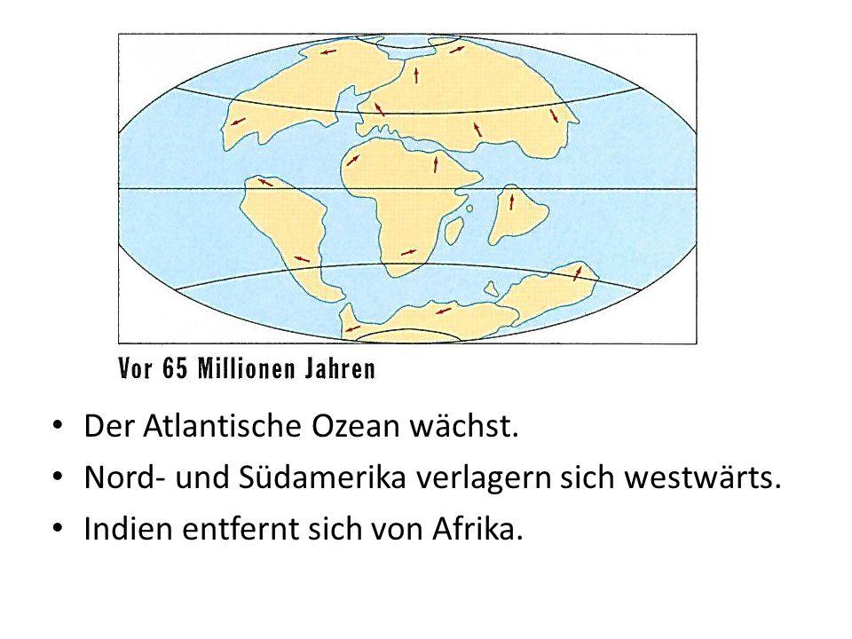 Der Atlantische Ozean wächst. Nord- und Südamerika verlagern sich westwärts. Indien entfernt sich von Afrika.