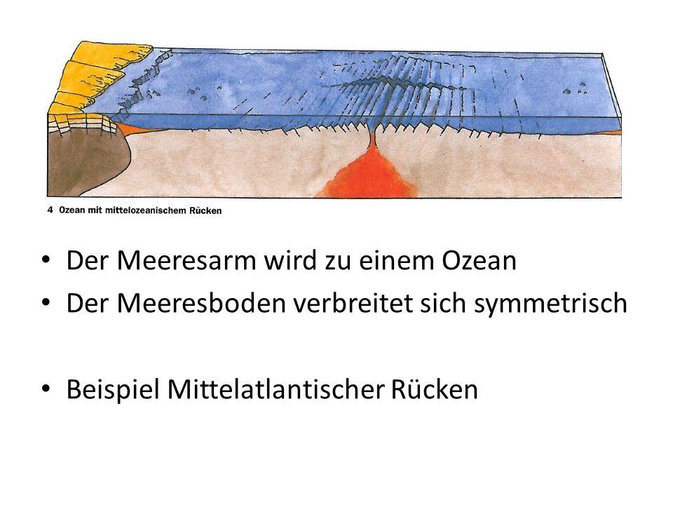 Der Meeresarm wird zu einem Ozean Der Meeresboden verbreitet sich symmetrisch Beispiel Mittelatlantischer Rücken