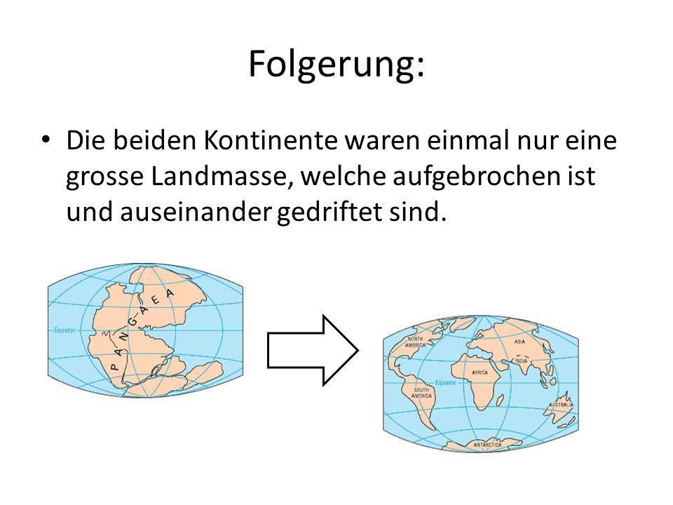 Folgerung: Die beiden Kontinente waren einmal nur eine grosse Landmasse, welche aufgebrochen ist und auseinander gedriftet sind.