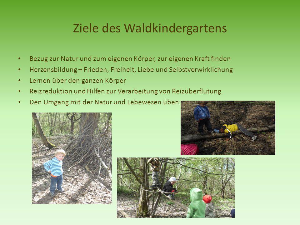 Ziele des Waldkindergartens Bezug zur Natur und zum eigenen Körper, zur eigenen Kraft finden Herzensbildung – Frieden, Freiheit, Liebe und Selbstverwi