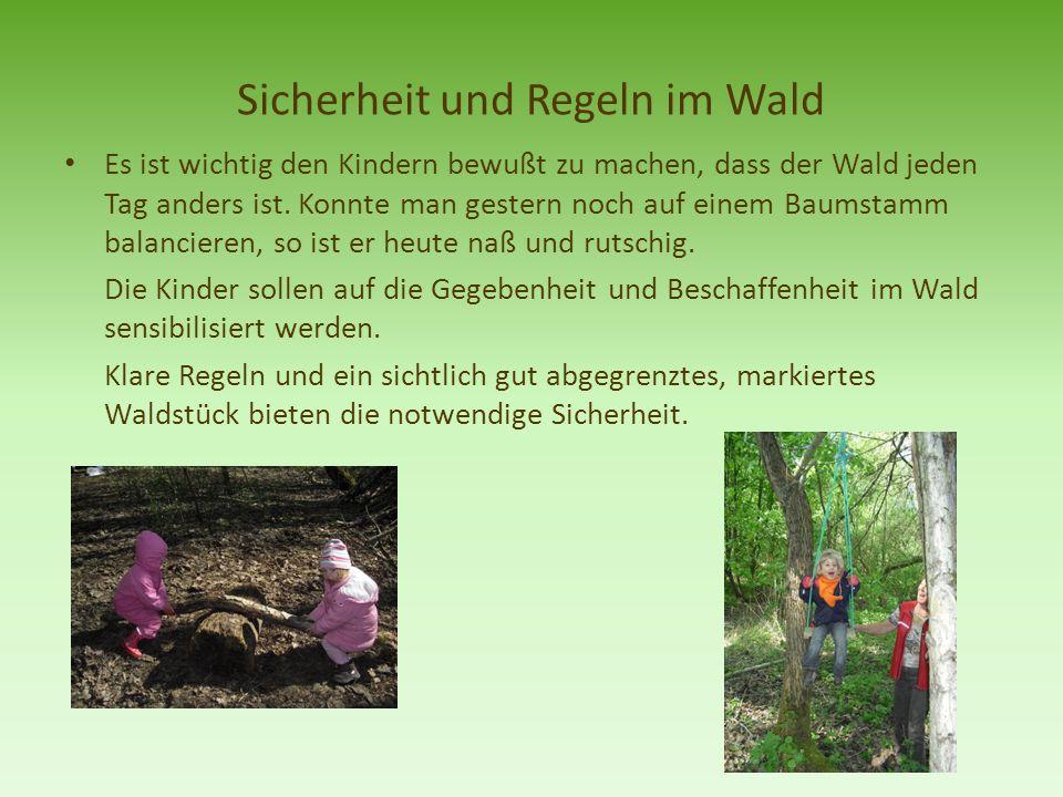 Sicherheit und Regeln im Wald Es ist wichtig den Kindern bewußt zu machen, dass der Wald jeden Tag anders ist. Konnte man gestern noch auf einem Baums
