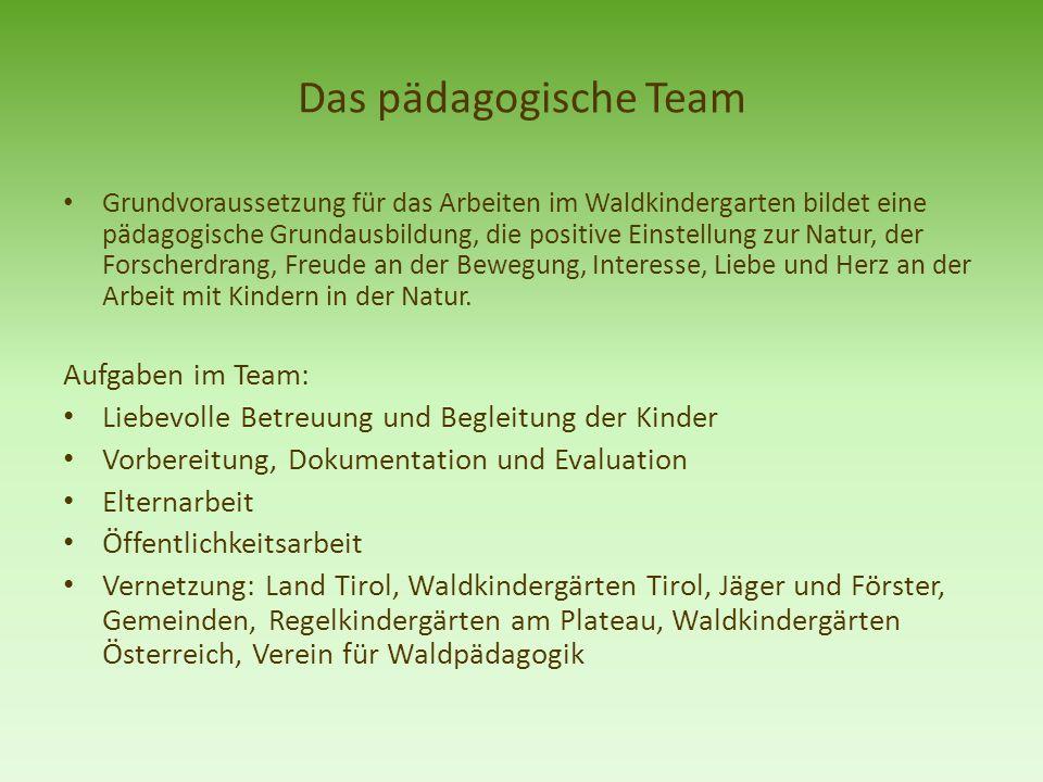 Das pädagogische Team Grundvoraussetzung für das Arbeiten im Waldkindergarten bildet eine pädagogische Grundausbildung, die positive Einstellung zur N