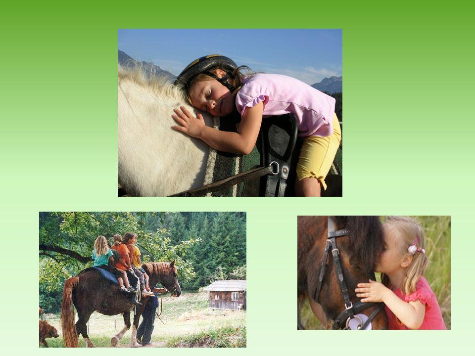 4 Kinder ein Pony eine reitpädagogische Betreuerin & jede Menge Spaß
