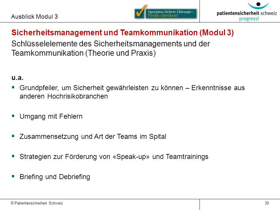 Ausblick Modul 3 30 Sicherheitsmanagement und Teamkommunikation (Modul 3) Schlüsselelemente des Sicherheitsmanagements und der Teamkommunikation (Theo