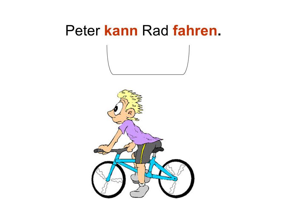 Peter kann Rad fahren.