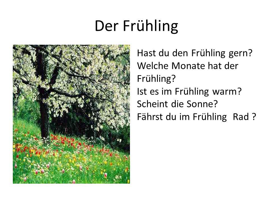 Der Frühling Hast du den Frühling gern? Welche Monate hat der Frühling? Ist es im Frühling warm? Scheint die Sonne? Fährst du im Frühling Rad ?