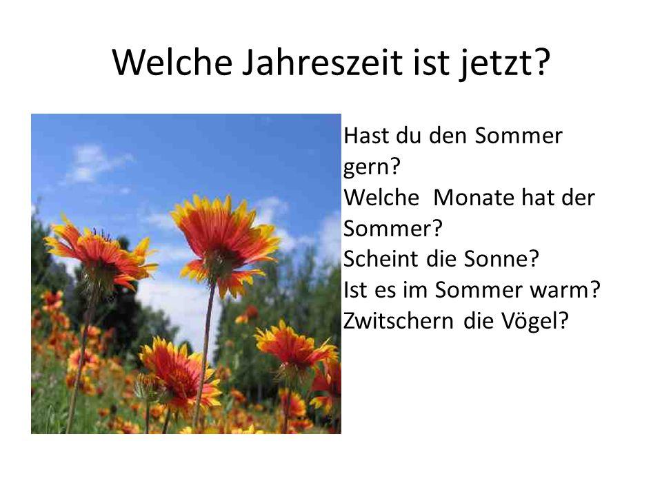 Welche Jahreszeit ist jetzt? Hast du den Sommer gern? Welche Monate hat der Sommer? Scheint die Sonne? Ist es im Sommer warm? Zwitschern die Vögel?