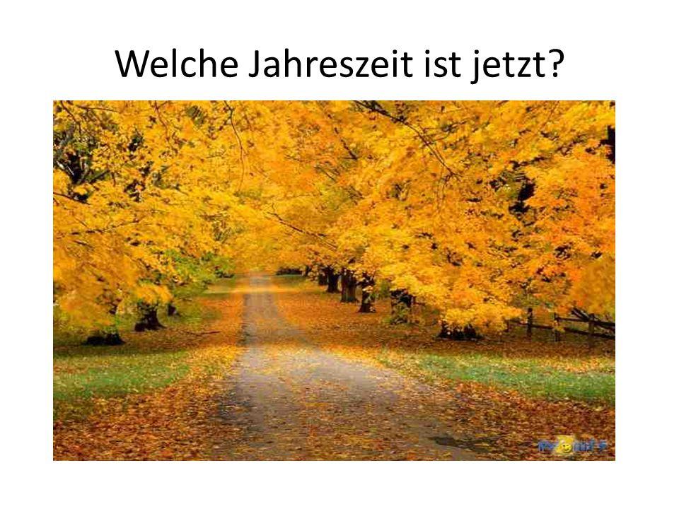 Der Herbst Hast du den Herbst gern.Welche Monate hat der Herbst.