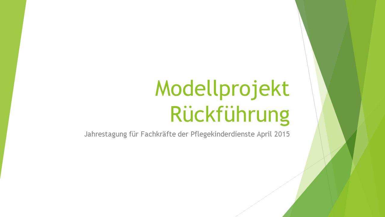 Modellprojekt Rückführung Jahrestagung für Fachkräfte der Pflegekinderdienste April 2015