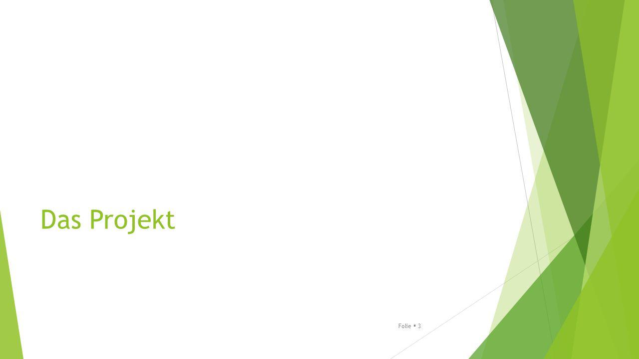 Modellprojekt der GEBIT Münster  9 auftraggebende Kommunen: Kreis Soest, Landkreis Peine; Region Hannover, Stadt Bergheim, Stadt Celle, Stadt Jena, Stadt Lüneburg, Stadt Porta-Westfalica, Stadt Soest  Laufzeit: September 2012 bis Dezember 2013  In jeder Kommune wurde in Zusammenarbeit von öffentlichem und freien Trägern ein individuelles Rückführungskonzept entwickelt  Parallel fanden zentrale Sitzungen statt, bei denen sich die Kommunen untereinander austauschen konnten  Abschluss durch Handlungsempfehlungen für die Erstellung eines individuellen Rückführungskonzepts – nicht DAS Rückführungskonzept Folie  4