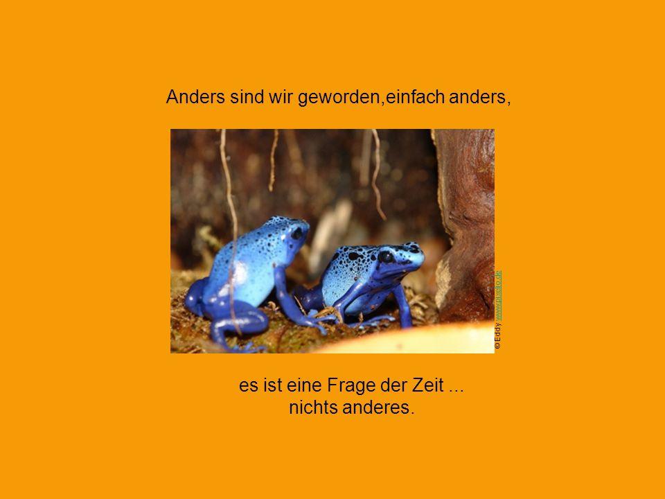 Wir, wir... sind nicht jung geblieben, weil wir nicht älter wurden. © Frank Theobald www.pixelio.dewww.pixelio.de