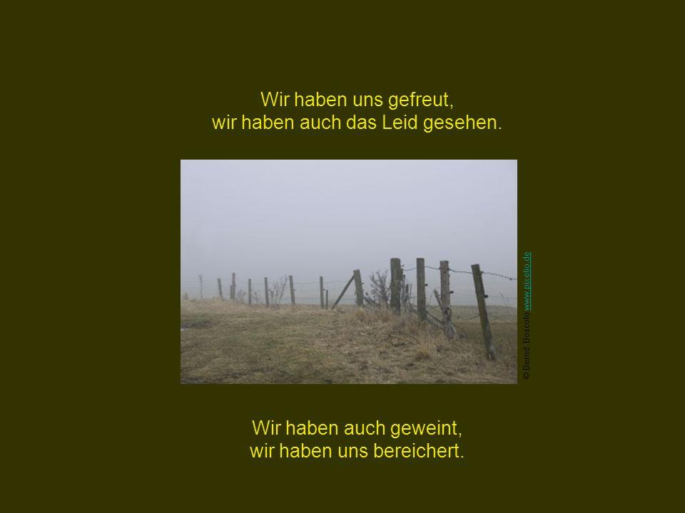 Wir haben Rast gemacht, wir haben uns gepflegt. © Carlo Schrodt www.pixelio.dewww.pixelio.de