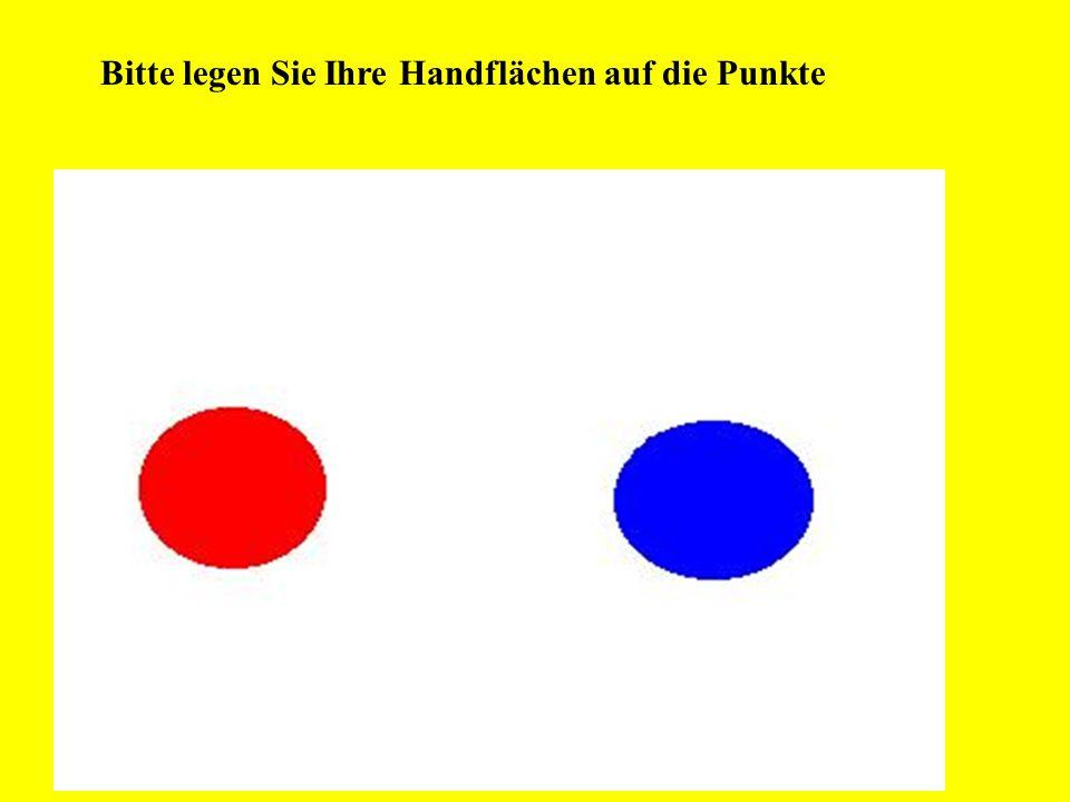 Bevor Sie aber in den Genuß des Bildes kommen, müssen Sie zuerst Ihre rechte Hand auf den Roten und Ihre linke Hand auf den Blauen Punkt legen, damit Ihr PC Ihre Handflächen abscannen und somit prüfen kann, ob Sie schon über 18 Jahre Alt sind.