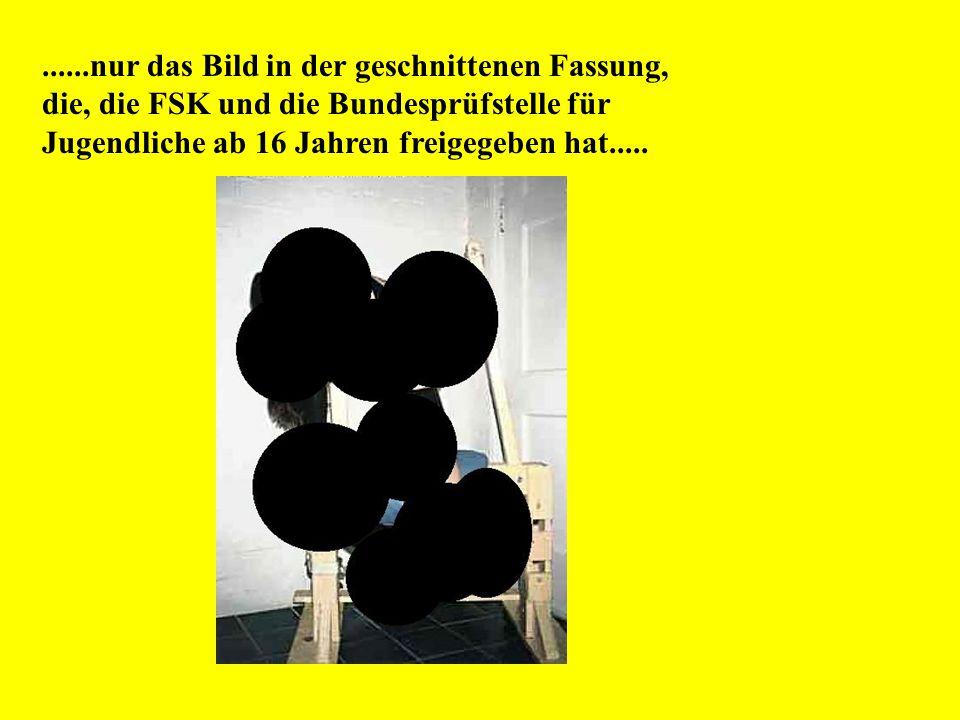 ......nur das Bild in der geschnittenen Fassung, die, die FSK und die Bundesprüfstelle für Jugendliche ab 16 Jahren freigegeben hat.....