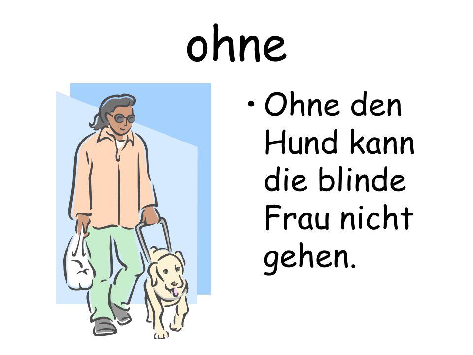 ohne Ohne den Hund kann die blinde Frau nicht gehen.