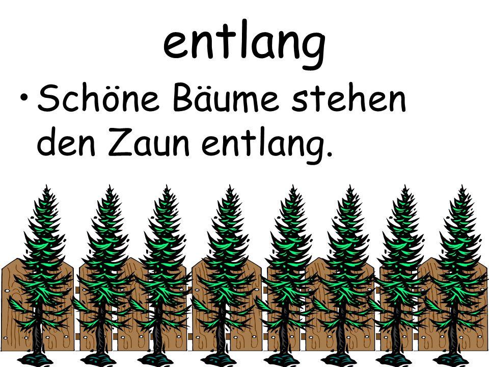 entlang Schöne Bäume stehen den Zaun entlang.