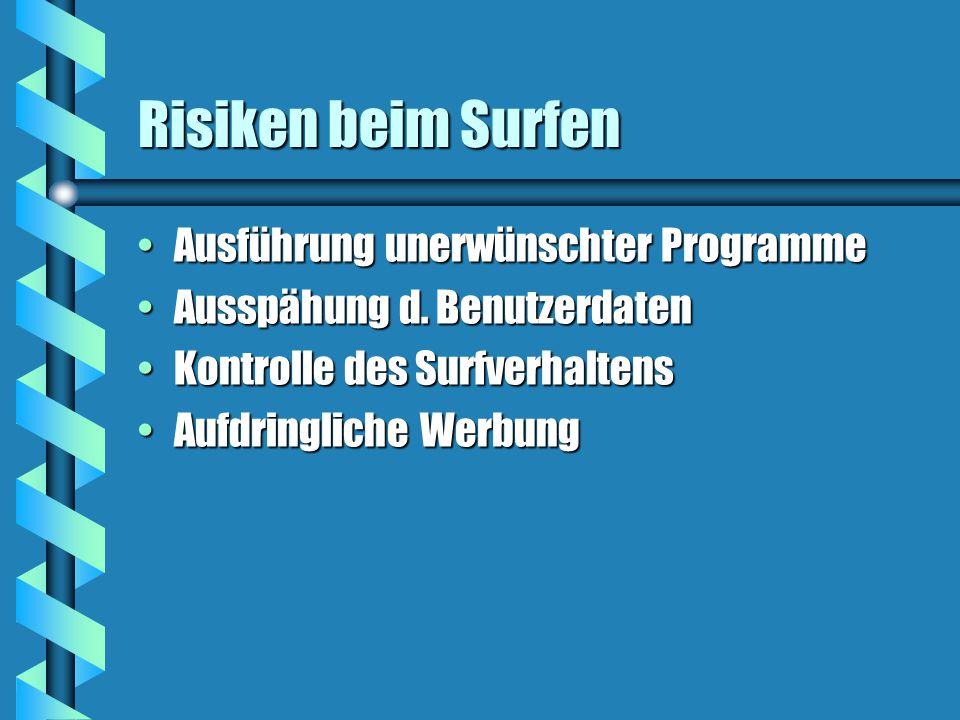 Risiken beim Surfen Ausführung unerwünschter ProgrammeAusführung unerwünschter Programme Ausspähung d.