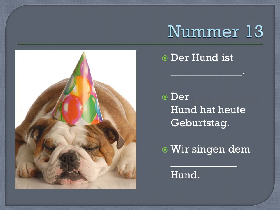  Der Hund ist _____________.  Der ____________ Hund hat heute Geburtstag.