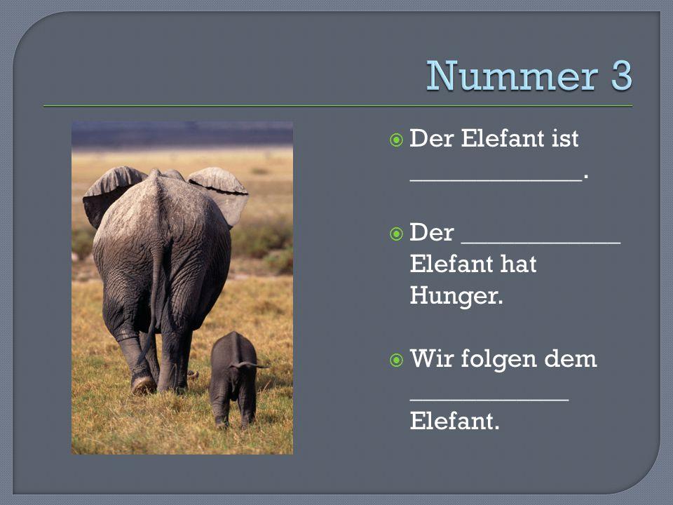  Der Elefant ist _____________.  Der ____________ Elefant hat Hunger.