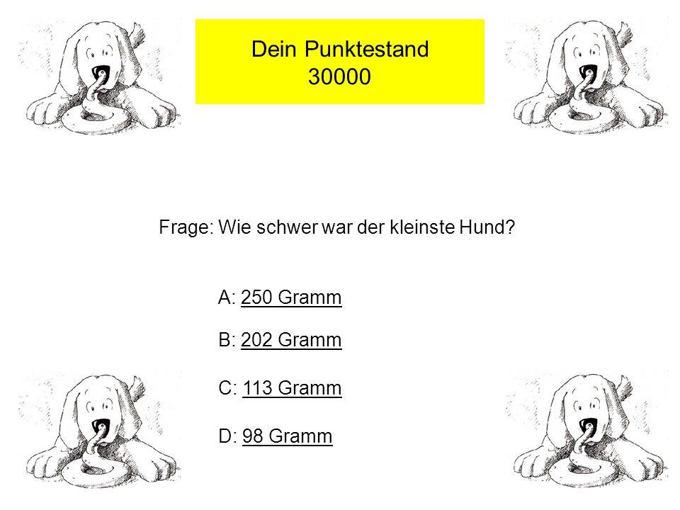 Dein Punktestand 30000 Frage: Wie schwer war der kleinste Hund.
