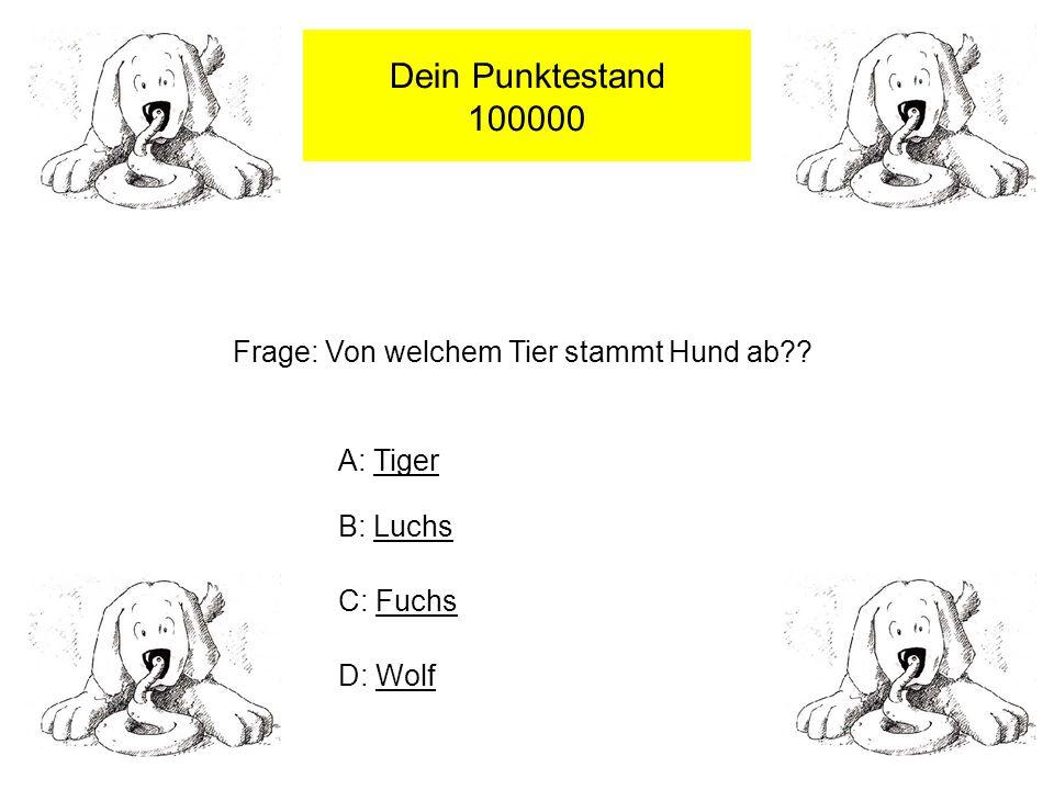 Dein Punktestand 100000 Frage: Von welchem Tier stammt Hund ab?.