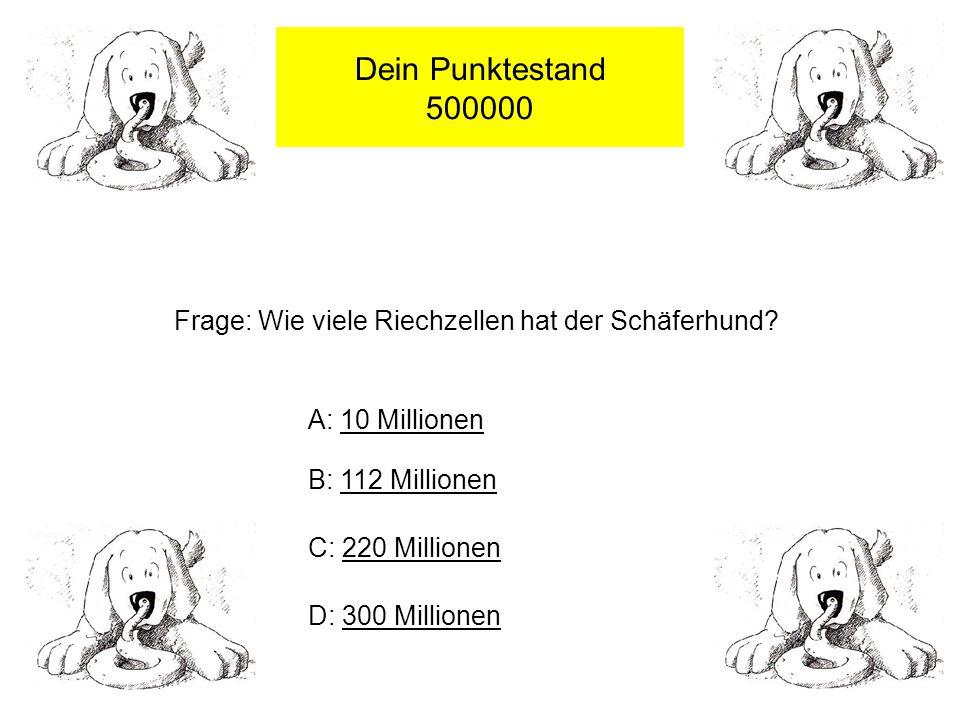 Dein Punktestand 500000 Frage: Wie viele Riechzellen hat der Schäferhund.
