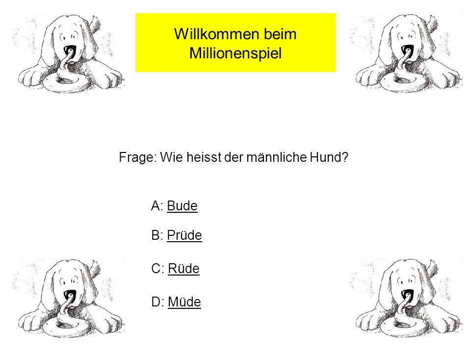 Willkommen beim Millionenspiel Frage: Wie heisst der männliche Hund.