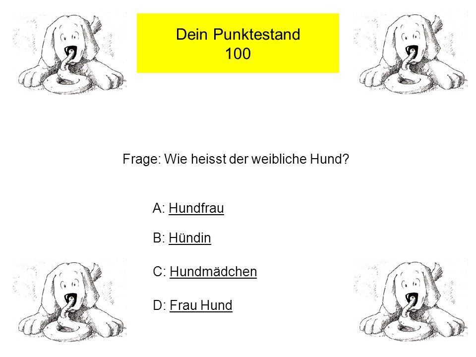 Dein Punktestand 100 Frage: Wie heisst der weibliche Hund.