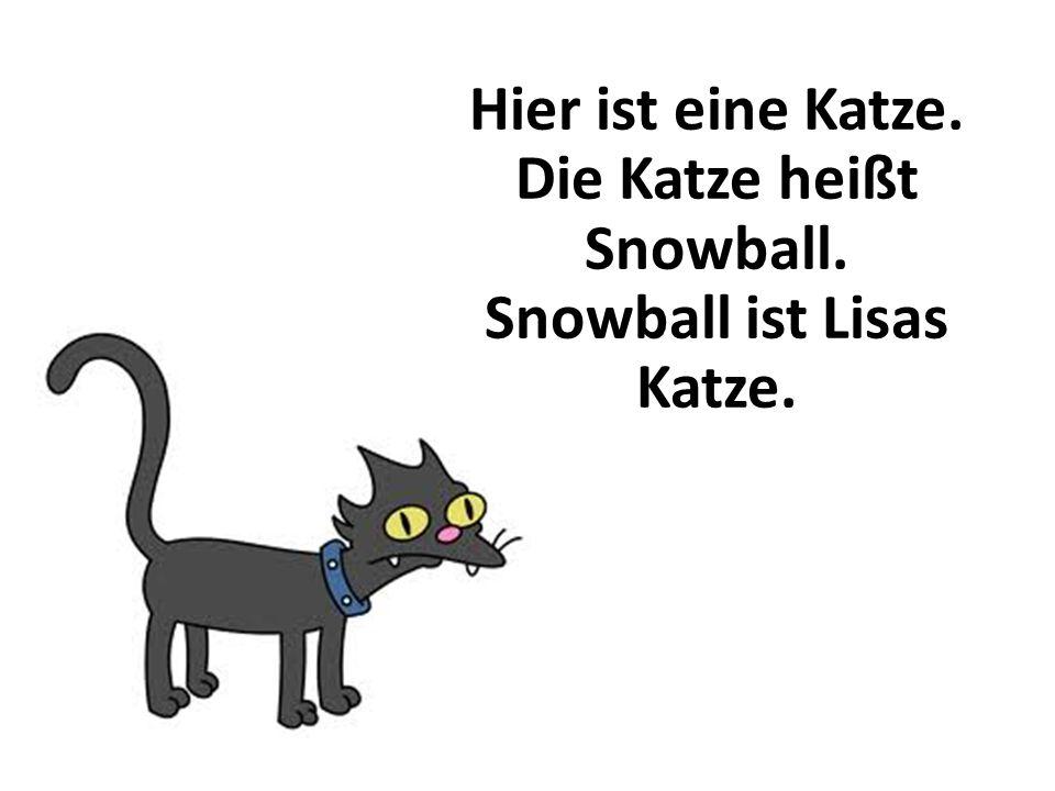 Hier ist eine Katze. Die Katze heißt Snowball. Snowball ist Lisas Katze.