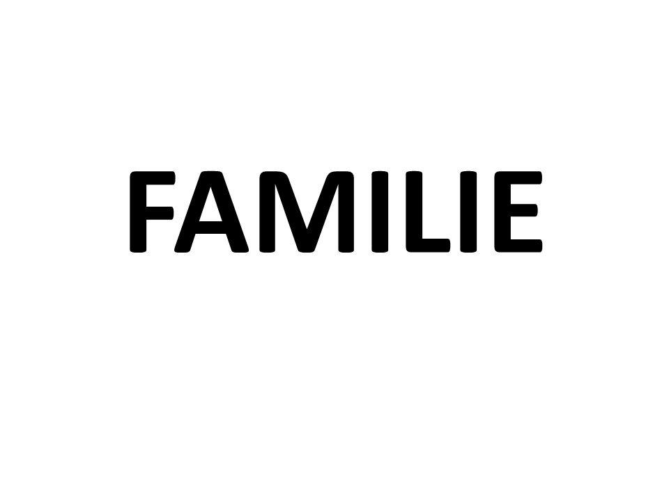 Beschreib deine Familie.Wie heisst deine Mutti oder deiner Vati.