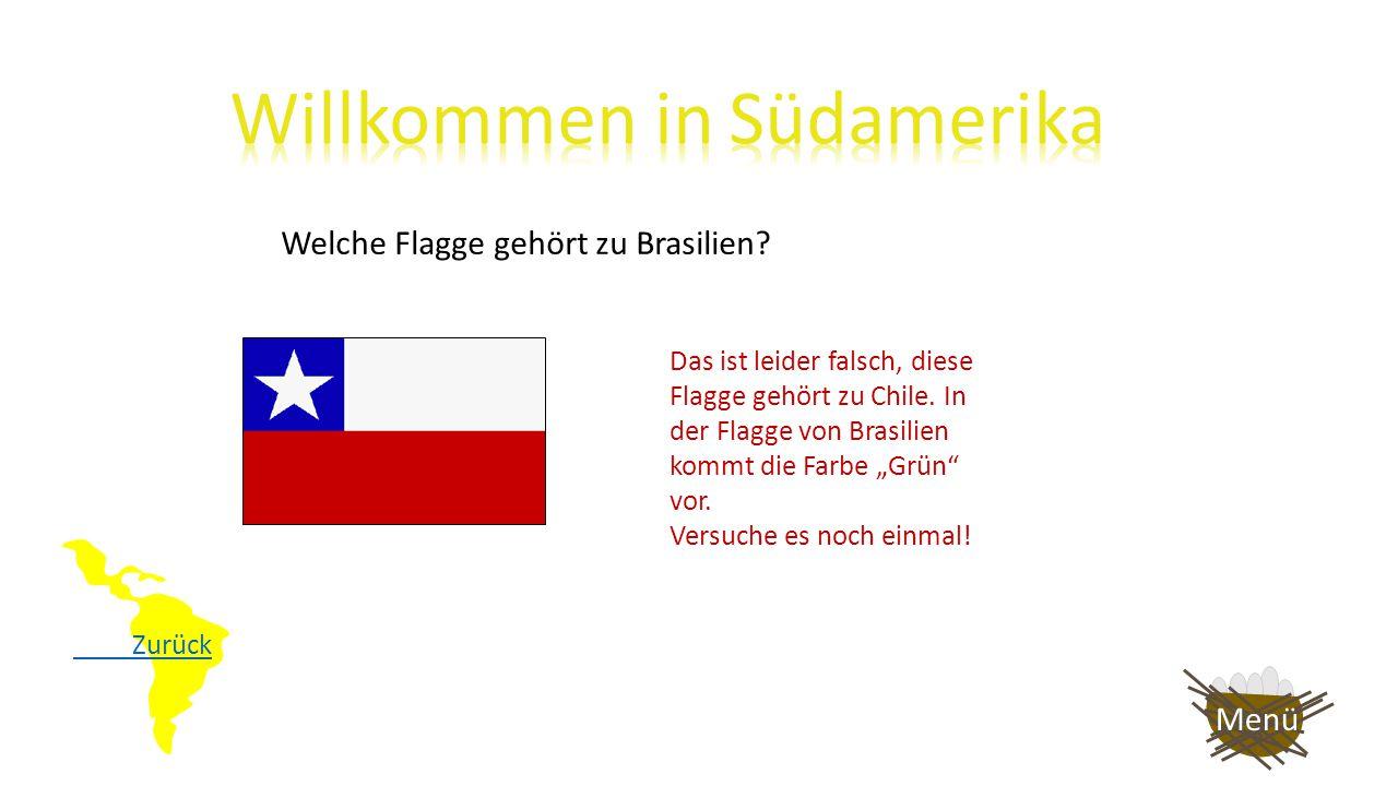 Welche Flagge gehört zu Brasilien? Das ist richtig, sehr gut! Diese Flagge gehört zu Argentinien. Diese Flagge gehört zu Chile. Auf nach Europa! Menü