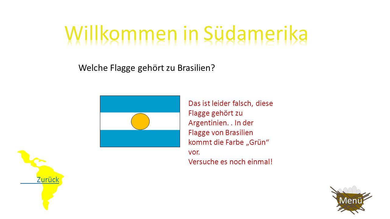 """Zurück Welche Flagge gehört zu Brasilien? Das ist leider falsch, diese Flagge gehört zu Chile. In der Flagge von Brasilien kommt die Farbe """"Grün"""" vor."""