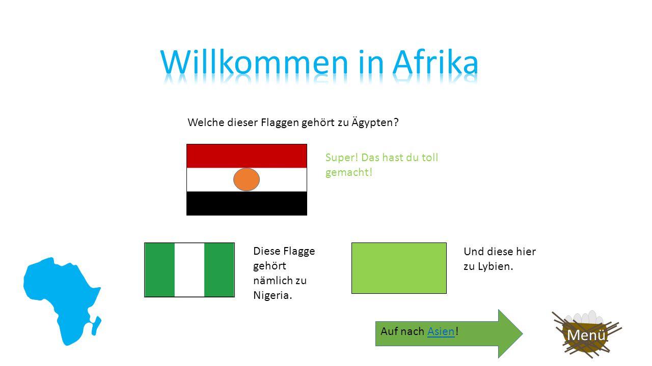 Welche dieser Flaggen gehört zu Ägypten.Deine Antwort war leider nicht richtig.