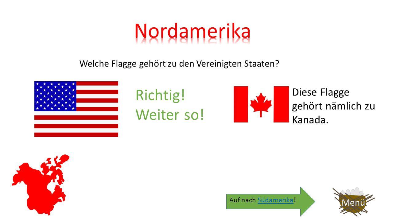 Welche Flagge gehört zu den Vereinigten Staaten? Menü