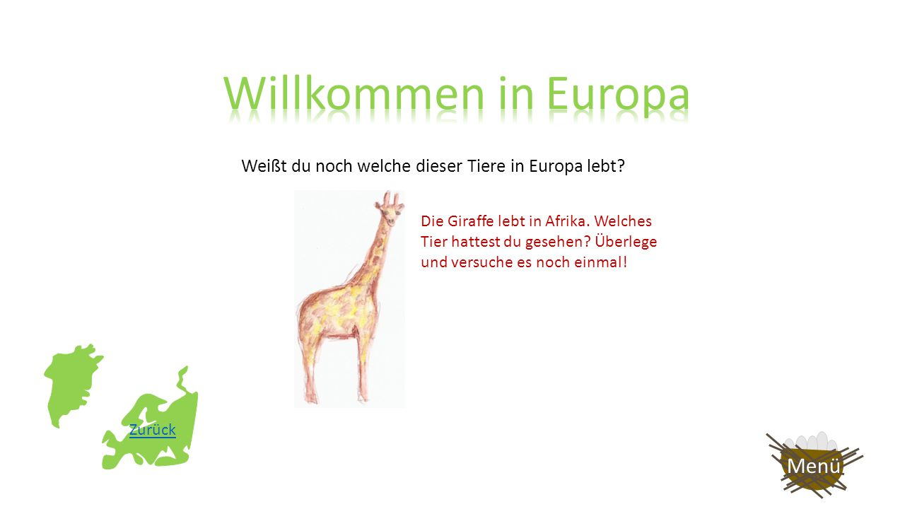 Weißt du noch welche dieser Tiere in Europa lebt? Das Lama lebt in Südamerika. Welches Tier hattest du gesehen? Überlege und versuche es noch einmal!