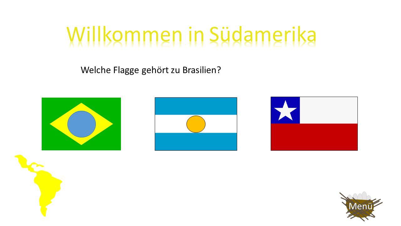 Welche Flagge gehört zu Brasilien? Menü