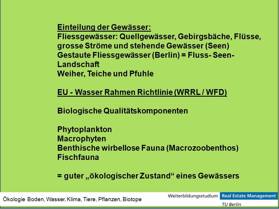 Ökologie Boden, Wasser, Klima, Tiere, Pflanzen, Biotope Einteilung der Gewässer: Fliessgewässer: Quellgewässer, Gebirgsbäche, Flüsse, grosse Ströme un