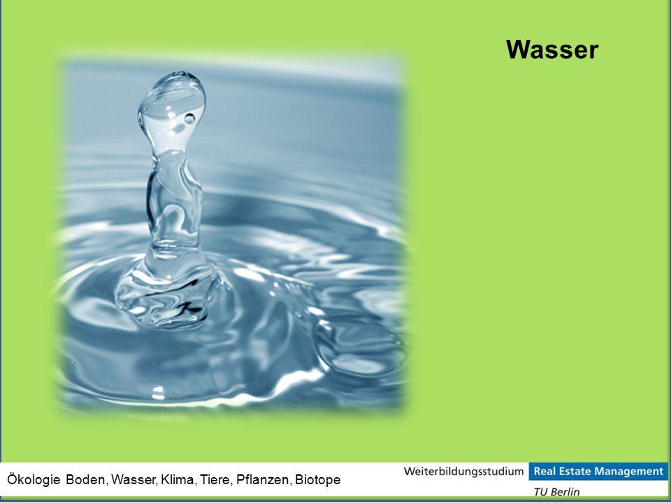 Ökologie Boden, Wasser, Klima, Tiere, Pflanzen, Biotope Wasser